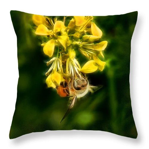 Bee Throw Pillow featuring the photograph Busy Bee by Lucy VanSwearingen