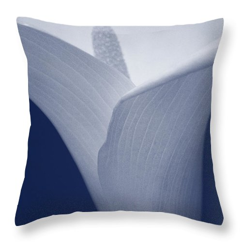 Calla Throw Pillow featuring the photograph Calla Lily by Paulo Goncalves