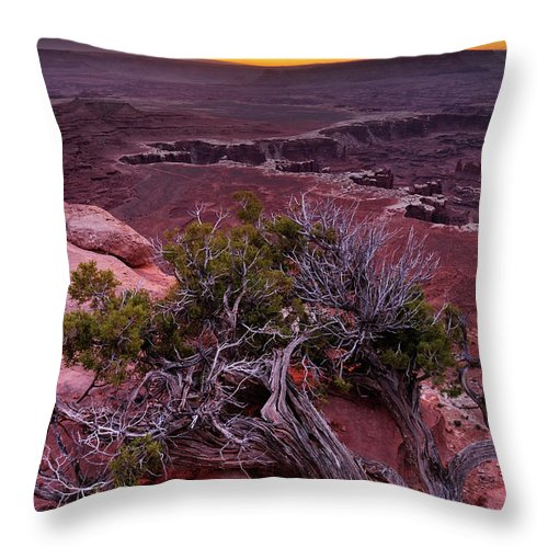 Scenics Throw Pillow featuring the photograph Canyonlands Sunrise Landscape With Dry by Rezus