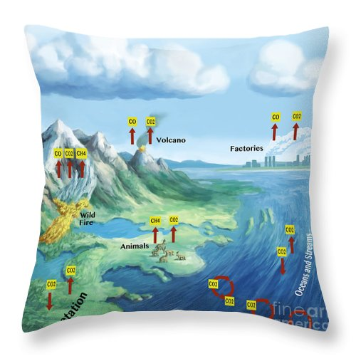 Carbon Cycle Throw Pillow featuring the photograph Carbon Cycle by Spencer Sutton