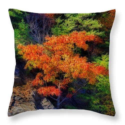 Nature Throw Pillow featuring the photograph Clinging On by Skip Willits