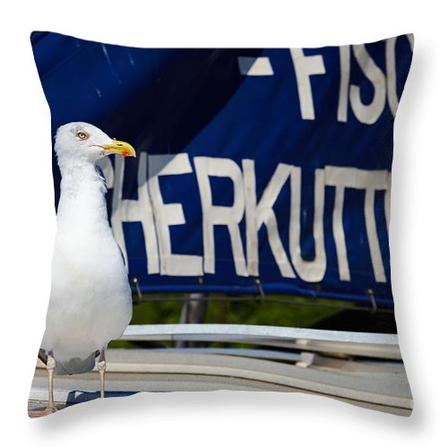 Closeup Throw Pillow featuring the photograph Closeup Of A Seagull On A Fisher Boat by Nick Biemans