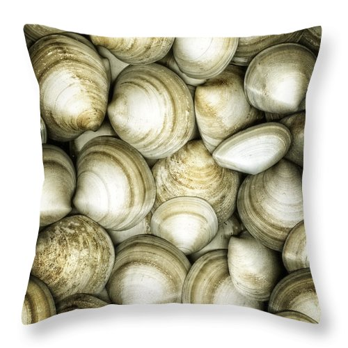 Clam Throw Pillow featuring the photograph Cockle Dream by Barbara Northrup