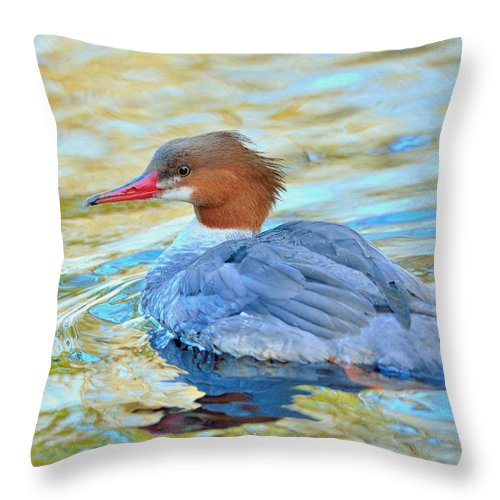 Duck Throw Pillow featuring the photograph Common Merganser by Kathy King