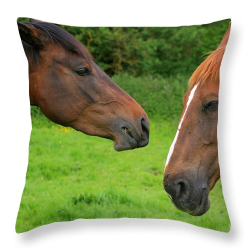 Horse Throw Pillow featuring the photograph Conversations by Angel Ciesniarska