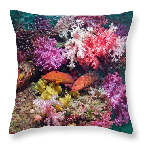 Tranquility Throw Pillow featuring the photograph Coral Reef Scenery by Georgette Douwma