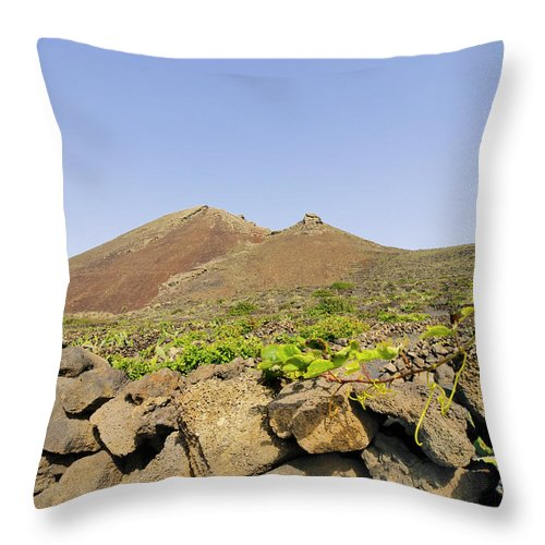 Volcanic Throw Pillow featuring the photograph Corona Volcano On Lanzarote by Karol Kozlowski