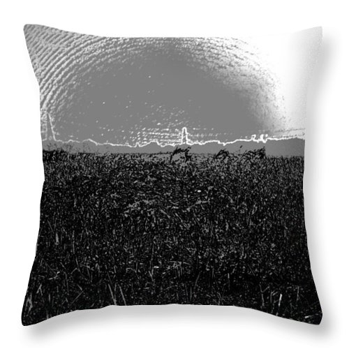 Bird Sanctuary Throw Pillow featuring the digital art Cut And Dried Grass Along With Growing Grass by Ashish Agarwal