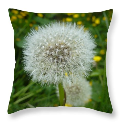 Dandelion Throw Pillow featuring the photograph Dandelion Seed by Nicki Bennett