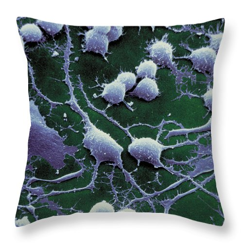 Dendrites Throw Pillow featuring the photograph Dendrites by David M Phillips The Population Council