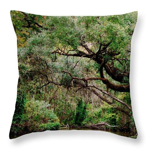 Dora Canal Throw Pillow featuring the photograph Dora Canal Tavares Florida by Cyndi Lenz