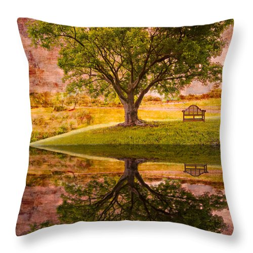 Clouds Throw Pillow featuring the photograph Dreaming by Debra and Dave Vanderlaan