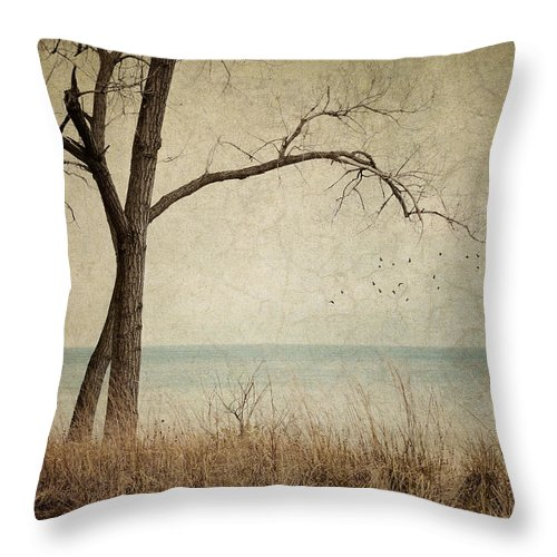 Landscape Throw Pillow featuring the photograph Drifting by Amy Weiss