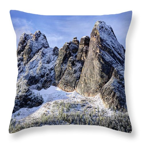 Tranquility Throw Pillow featuring the photograph Early Winter Spires by Virtualphotographers