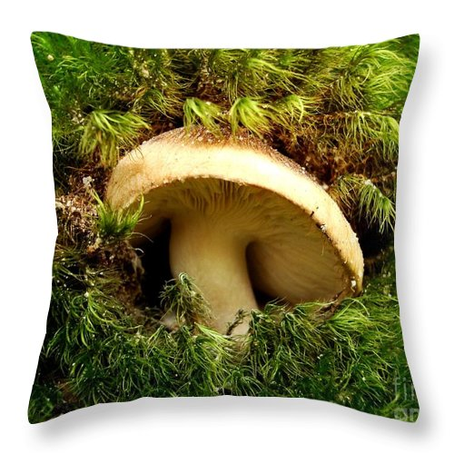 Mushroom Throw Pillow featuring the photograph Emerald Palace by Sharon Woerner