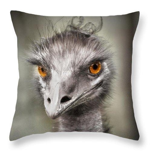 Emu Throw Pillow featuring the photograph Emu by Kym Clarke