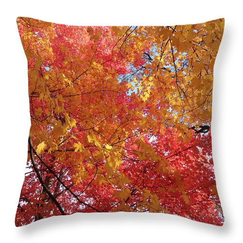 Fall Throw Pillow featuring the photograph Fall Saint Louis 1 by Monte Landis