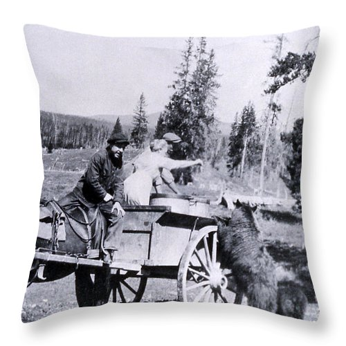 History Throw Pillow featuring the photograph Feeding Bear Yellowstone National Park by NPS Photo