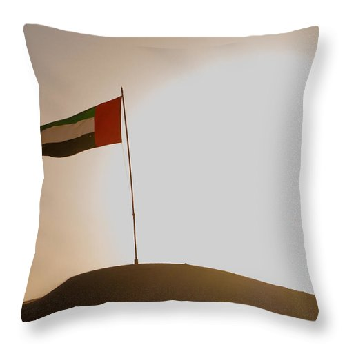 Desert Throw Pillow featuring the photograph Flag In The Desert by Domingos Soares