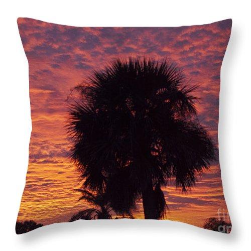 Tropic Throw Pillow featuring the photograph Florida Sunset by Allan Hughes