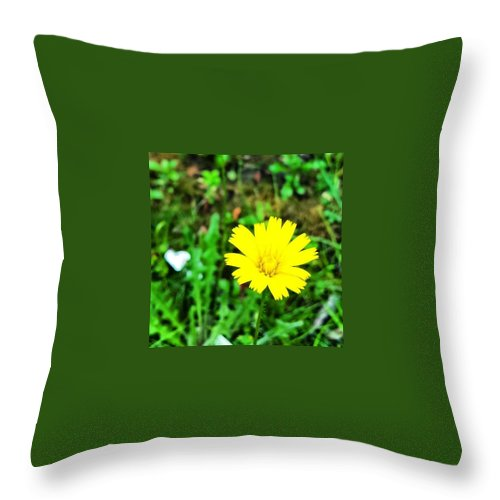 Beautiful Throw Pillow featuring the photograph Yellow Flower by J Roustie