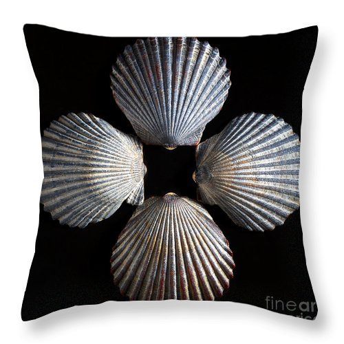 Shells Throw Pillow featuring the photograph Four Shells by Mark Miller