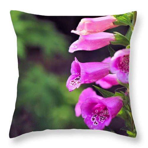 Foxglove Photo Throw Pillow featuring the photograph Foxglove by Katherine White