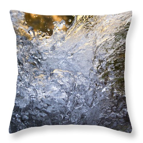Nature Throw Pillow featuring the photograph Frozen IIi by Daniel Csoka