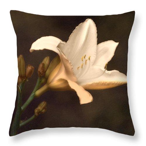 Arrangement Throw Pillow featuring the photograph Golden Daylily by Tom Mc Nemar