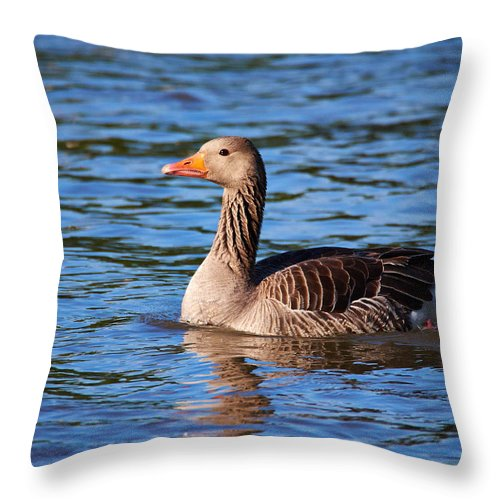 Alankomaat Throw Pillow featuring the photograph Graylag Goose by Jouko Lehto