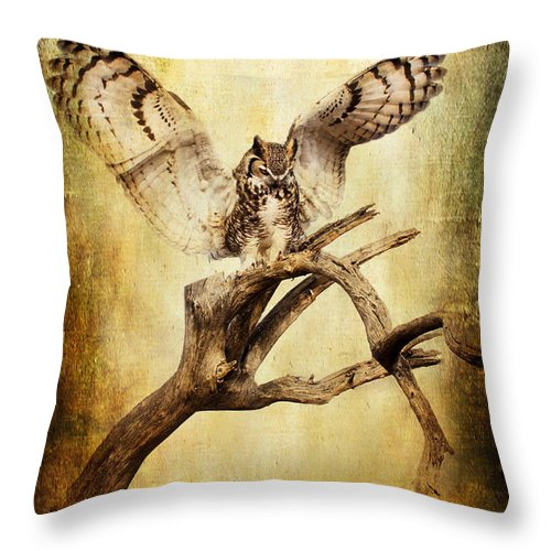 Owls Throw Pillow featuring the photograph Great Horned Owl by Barbara Manis
