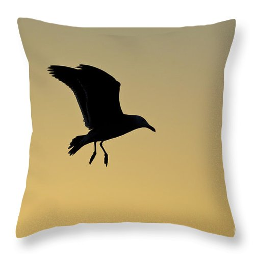 Nature Throw Pillow featuring the photograph Gull Silhouette by John Shaw