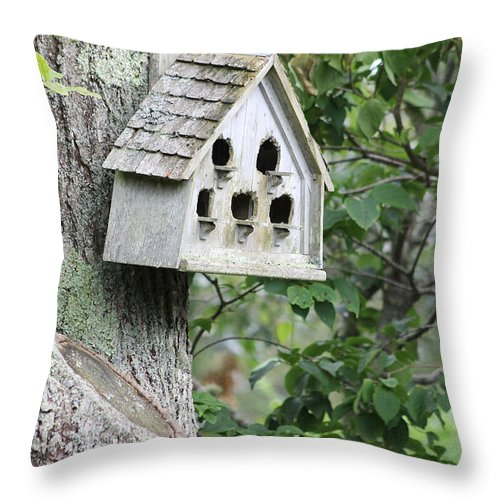 Birdhouse Throw Pillow featuring the photograph Hanging Around by Robin Raible