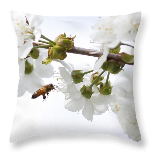 Insect Throw Pillow featuring the photograph Honey Bee by Photos By By Deb Alperin