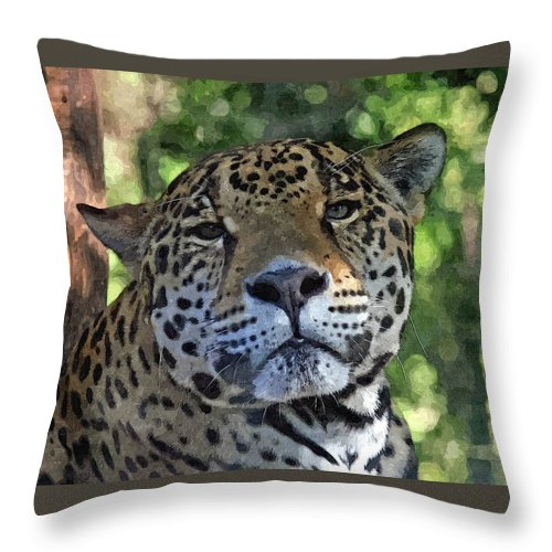 Animal Throw Pillow featuring the mixed media Jaguar 2 by Barry Spears