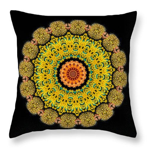 Ernst Haeckel Throw Pillow featuring the photograph Kaleidoscope Ernst Haeckl Sea Life Series Triptych by Amy Cicconi
