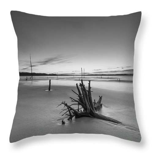 Frost Bite Throw Pillow featuring the photograph Laid To Rest by Michael Ver Sprill