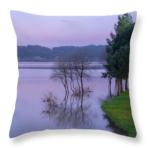 Lake Throw Pillow featuring the photograph Lake Pateira V by Alexandre Martins