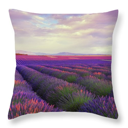 Dawn Throw Pillow featuring the photograph Lavender Field At Dusk by Mammuth