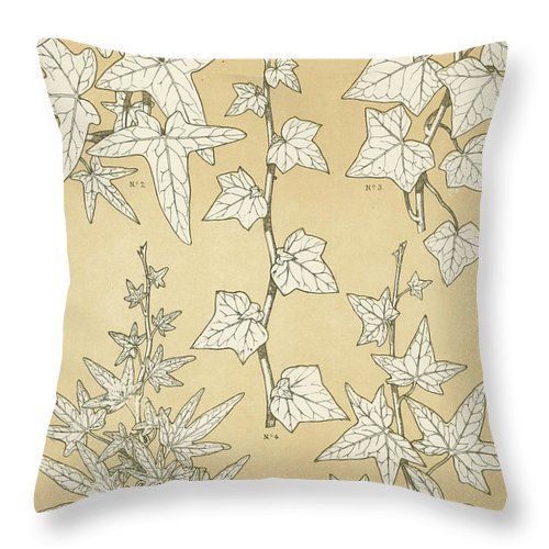 Ornament; Ornamentation; Design; Pattern; Historical; Plates; Leaves; Nature; Botany; Botanical; Leaf; Natural Throw Pillow featuring the painting Leaves From Nature by English School
