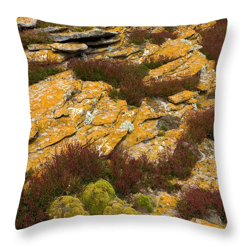 Lichen Throw Pillow featuring the photograph Lichened Rocks by John Shaw