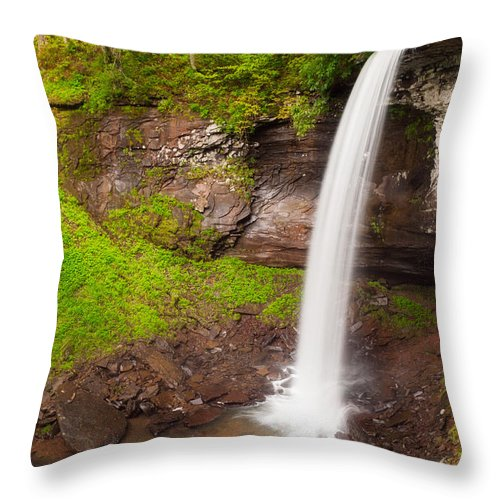 Green Throw Pillow featuring the photograph Lower Hills Creek Falls by Michael Blanchette