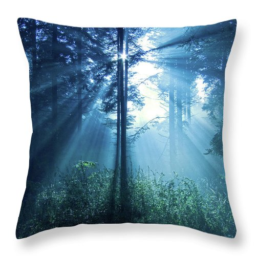 Nature Throw Pillow featuring the photograph Magical Light by Daniel Csoka
