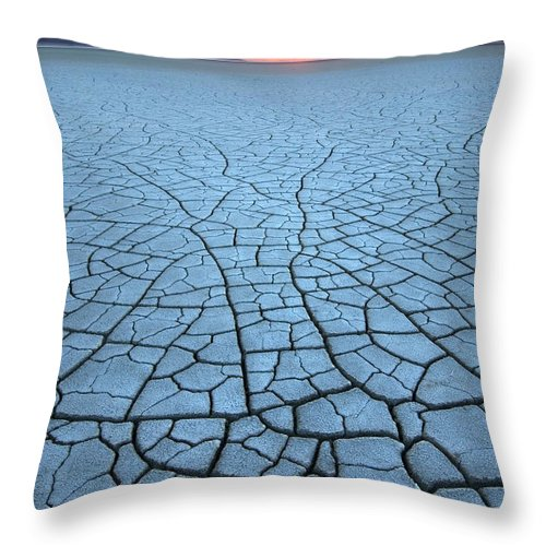 Tranquility Throw Pillow featuring the photograph Malheur National Wildlife Refuge, Oregon by Alan Majchrowicz