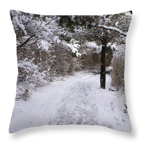 Marginal Way Throw Pillow featuring the photograph Marginal Way in Winter 2 by Paul Lavoie