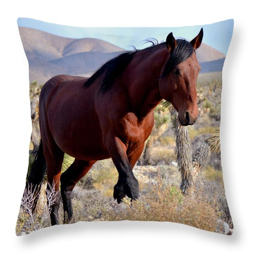 Horse Throw Pillow featuring the photograph Master And Commander by Debbie D Anthony