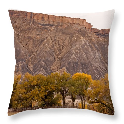 Afternoon Throw Pillow featuring the photograph Mesa by Fred Stearns