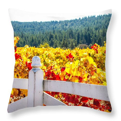 Napa Throw Pillow featuring the photograph Napa Fall Grapes by Brian Williamson