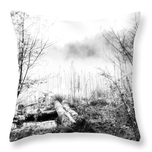Ice Fog Throw Pillow featuring the photograph Natural Ice Fog by Yevgeni Kacnelson