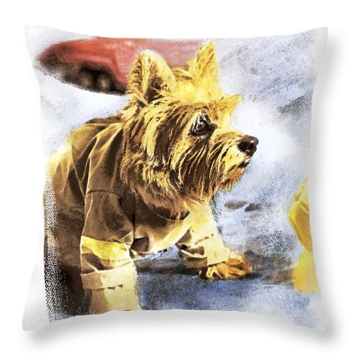 Watercolor Dog Throw Pillow featuring the photograph Norwich Terrier Fire Dog by Susan Stone